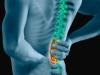 spine250